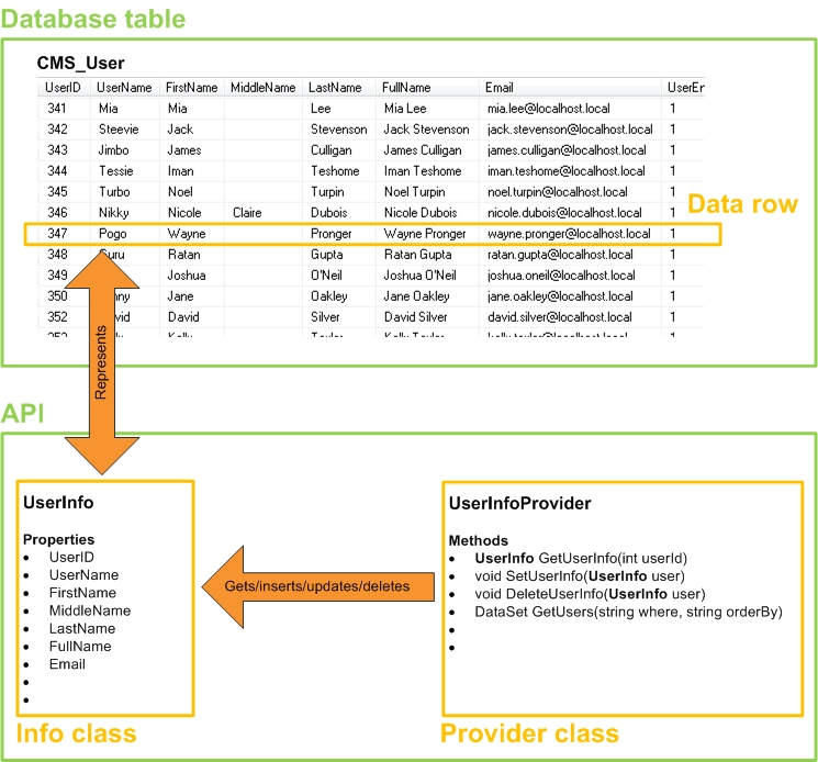 Info and Provider classes for the CMS_User database table